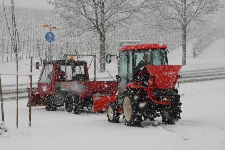 Winterdienst (4)